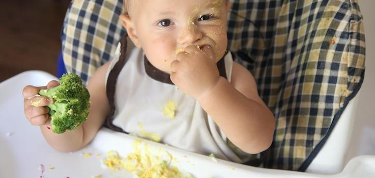 introducción del huevo en la alimentación del lactante.
