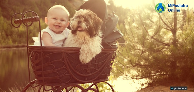 Para transportar un bebé