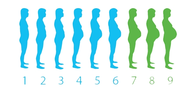 El embarazo mes a mes visto por un pediatra