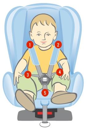 Fijación de 5 puntos en la silla de un bebé
