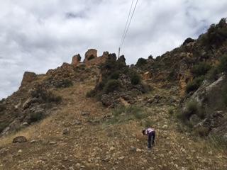 Excursiones a la naturaleza, castillos con niños y obesidad infantil