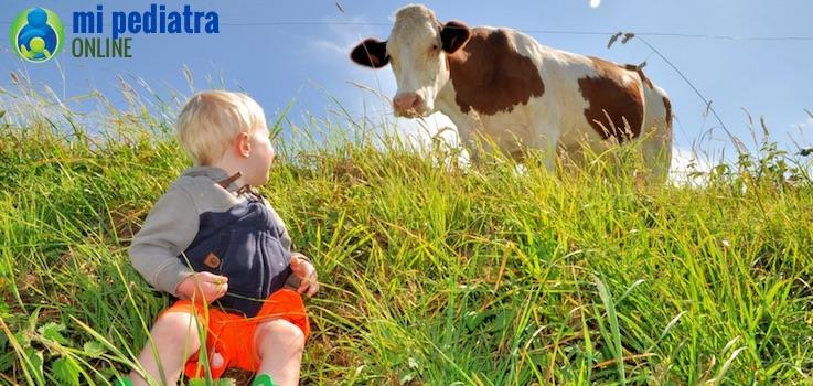Flora Intestinal y Alergia cada vez más frecuente
