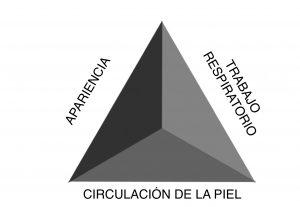 Triángulo de Evaluación Pediátrica