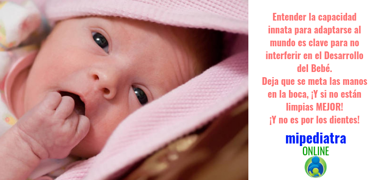 Los bebés se meten las manos en la boca, pero no es por los dientes. Sino para cosas mucho más importantes.