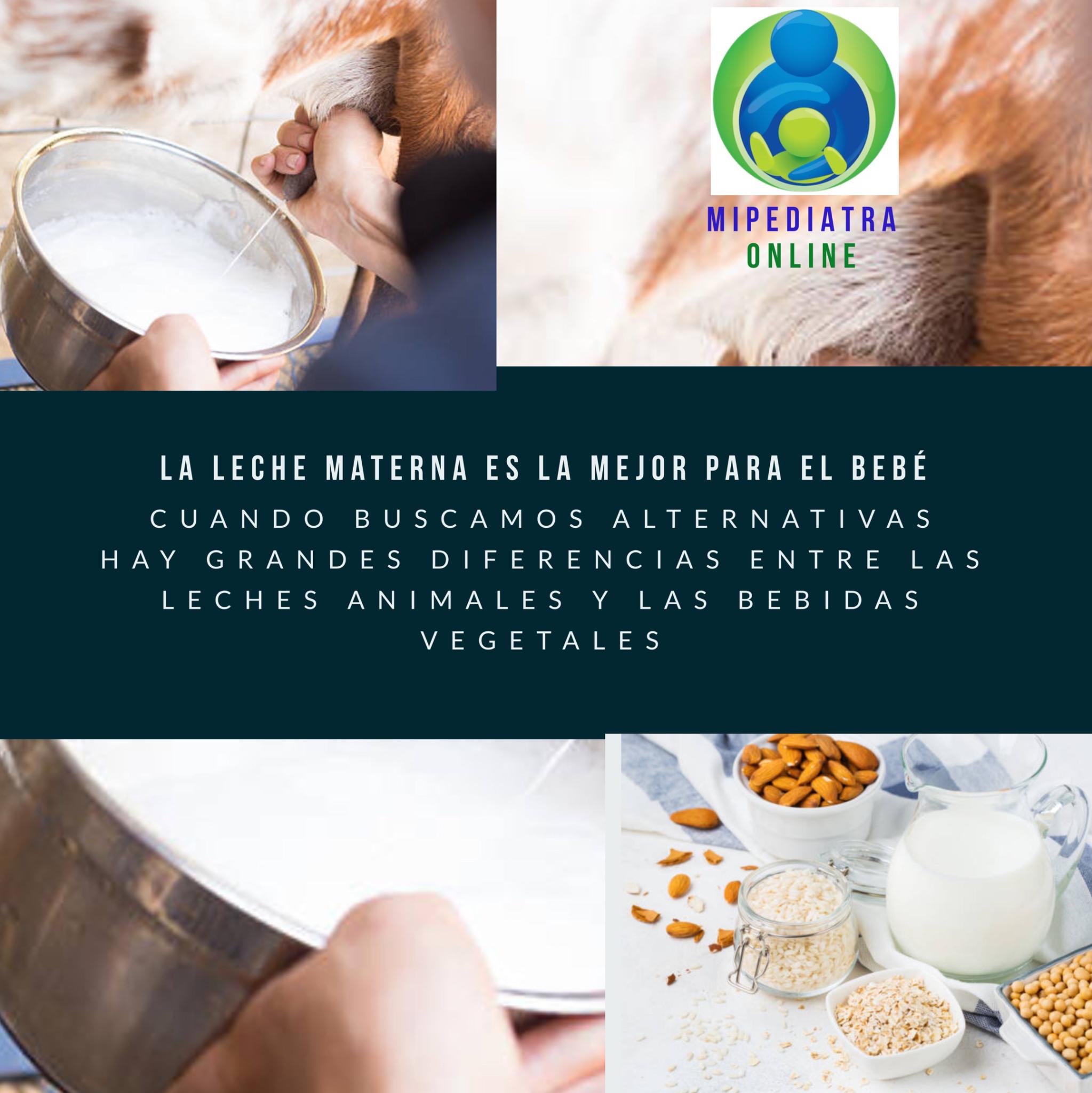 Leches Animales y Bebidas Vegetales en Alimentación Infantil